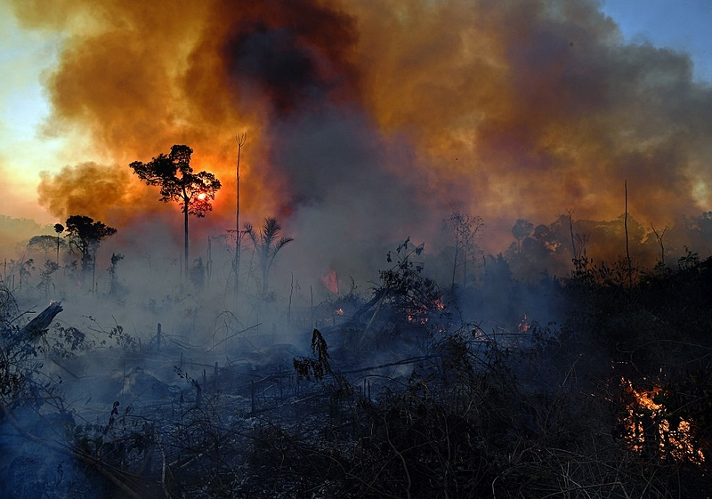 Smoke rises from an illegally lit fire in Amazon rainforest reserve, south of Novo Progresso in Para state, Brazil, on August 15, 2020. (Photo by CARL DE SOUZA / AFP)